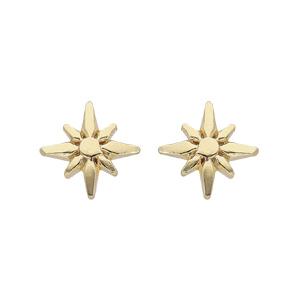 Boucles d\'oreille en argent rhodié et dorure jaune étoile Edelweis et fermoir poussette - Vue 1