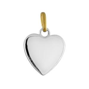 Pendentif acier et or coeur lisse 11mm - Vue 1