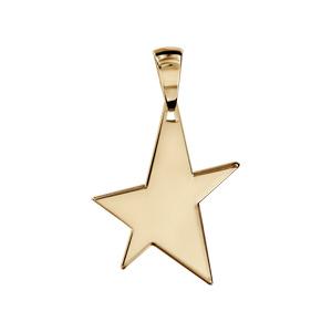 Pendentif en vermeil étoile à graver petit modèle - plaque prestige - Vue 1