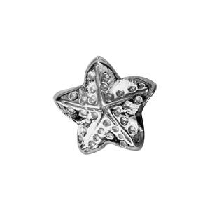 Charms Thabora en argent rhodié étoile de mer ouvragée - Vue 2