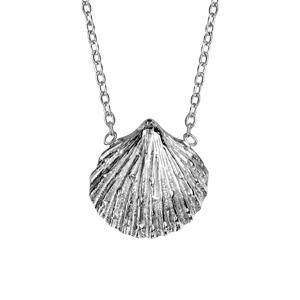 Image of Collier argent rhodié pendentif coquillage 42+3cm